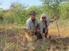 Walk with lions is a great conservation and education strategy.