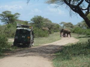 Having the flexibility to game drive in a national park by yourself is an added bonus to a guided self drive expedition.     Photo courtesy of Judith Africa Discovered 2015